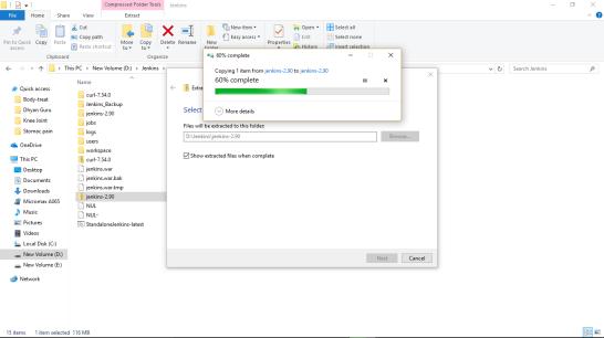 Jenkins-installer-file-unzip1.png